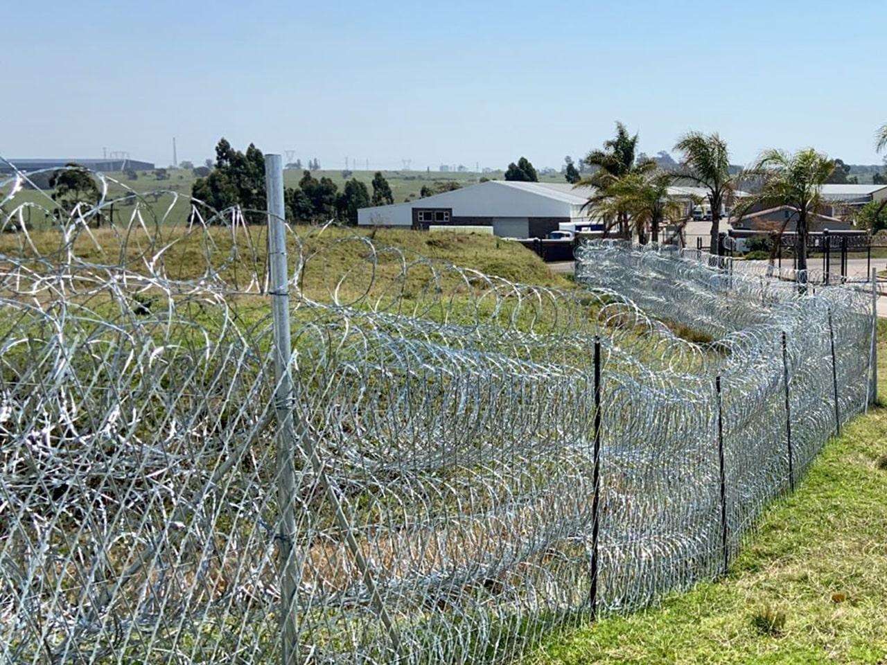 Concertina razor wire coils as wall perimeter protection